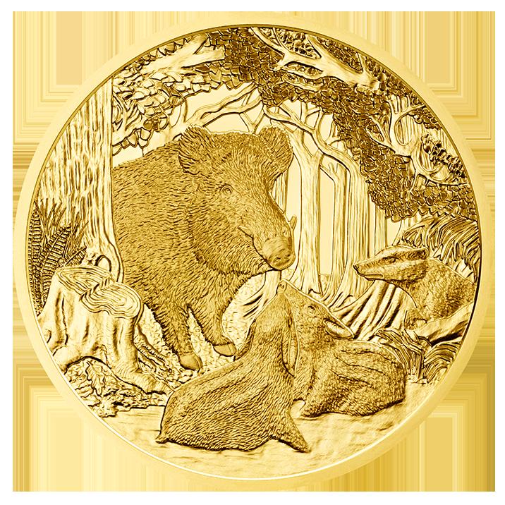 100 Euro Goldmünze Das Wildschwein Bildseite 100 Euro Goldmünze Das Wildschwein