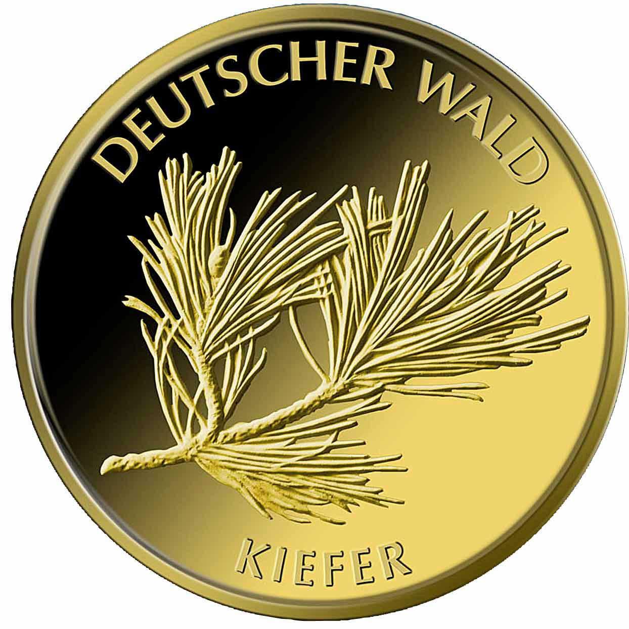 20 Euro Goldmünze Deutscher Wald Kiefer 2013 Bildseite 20 Euro Goldmünze Deutscher Wald Kiefer