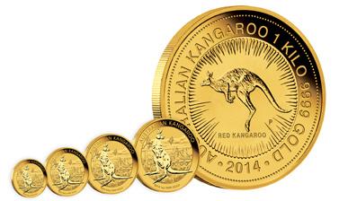 Australian Kangaroo Golmünzen Australian Kangaroo
