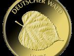 20 Euro Goldmünze  Deutscher Wald Linde 2015 Bildseite